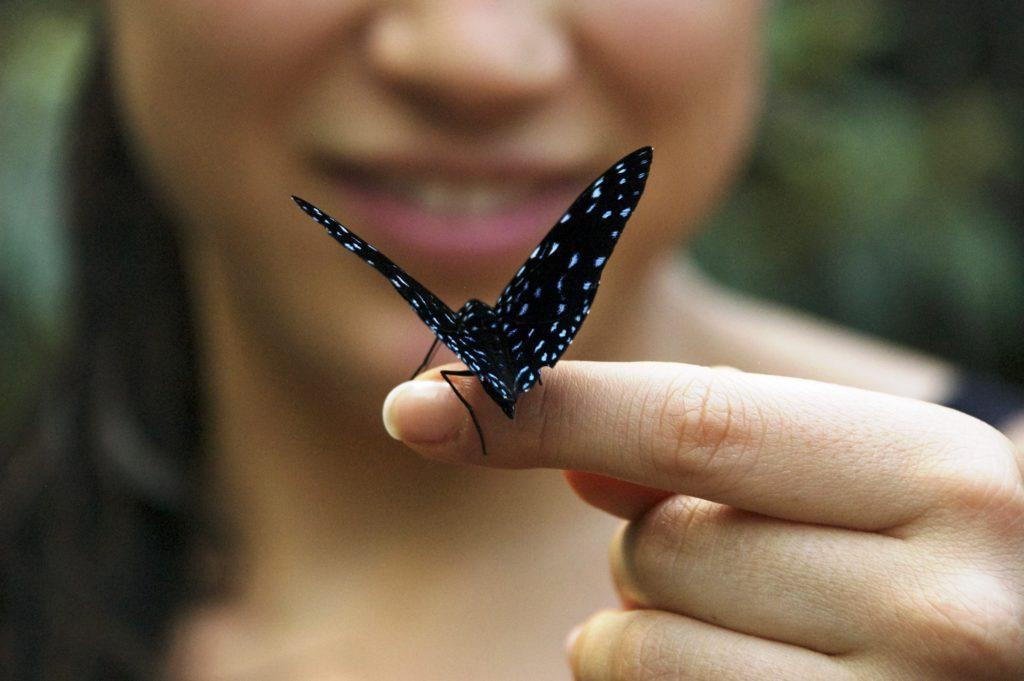 venta lotes y casas campestres colombia carmen de apicala fruworld naturaleza