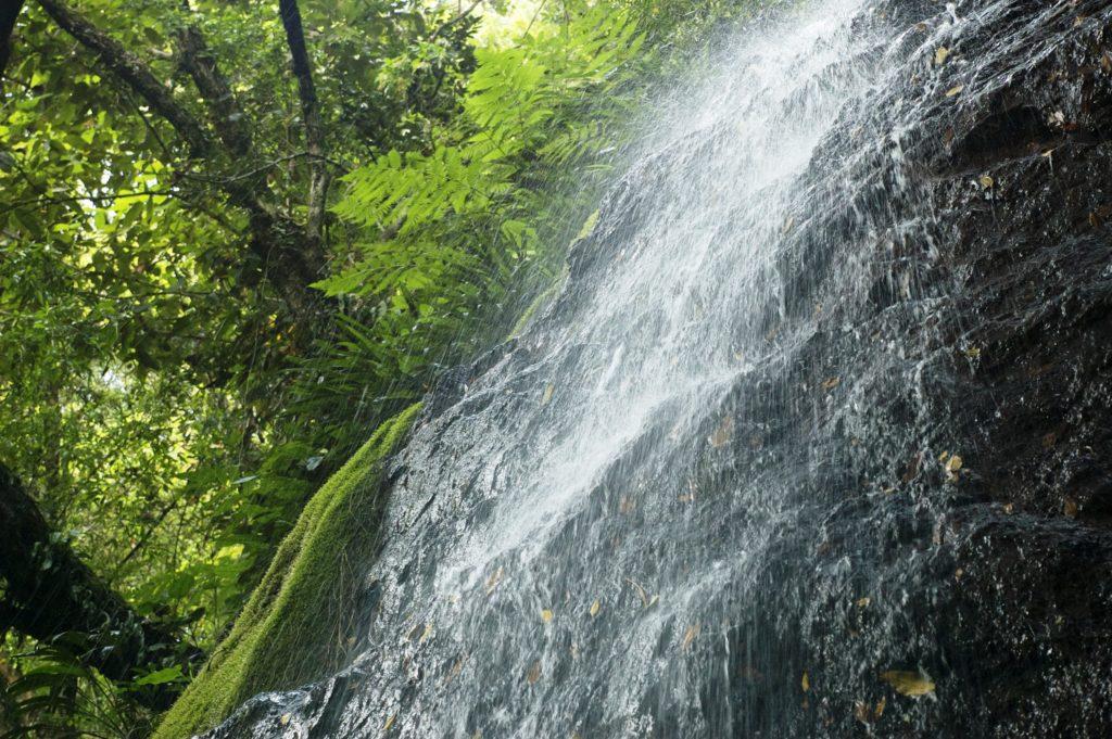 venta lotes y casas campestres colombia carmen de apicala fruworld cascada x 2