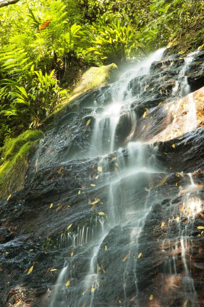 venta lotes y casas campestres colombia carmen de apicala fruworld cascada 5