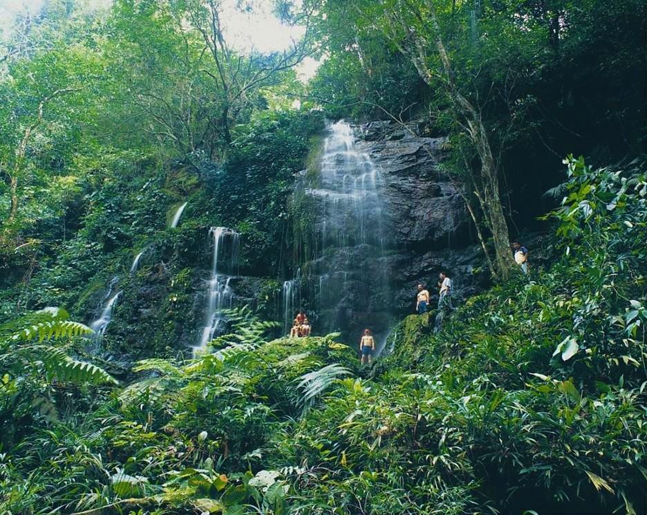 venta lotes y casas campestres colombia carmen de apicala gran cascada